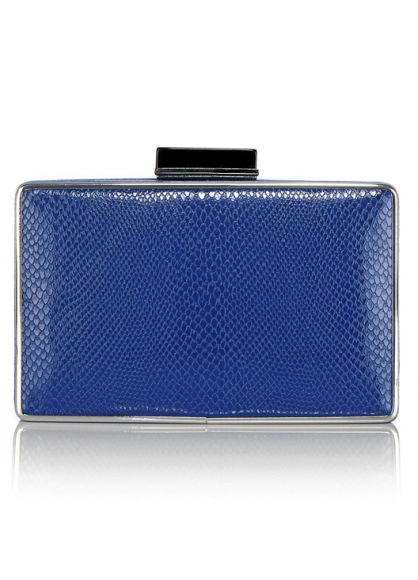 Coast blue clutch